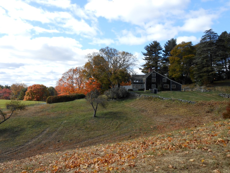 Picture of field and fall foliage